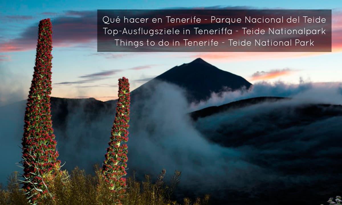 Things-to-do-Tenerife-Parque-Nacional-del-Teide