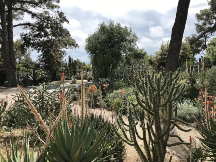 jardin-botanique1